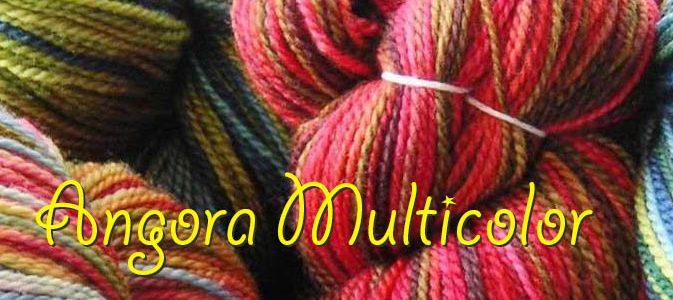 angora-multicolor-fet